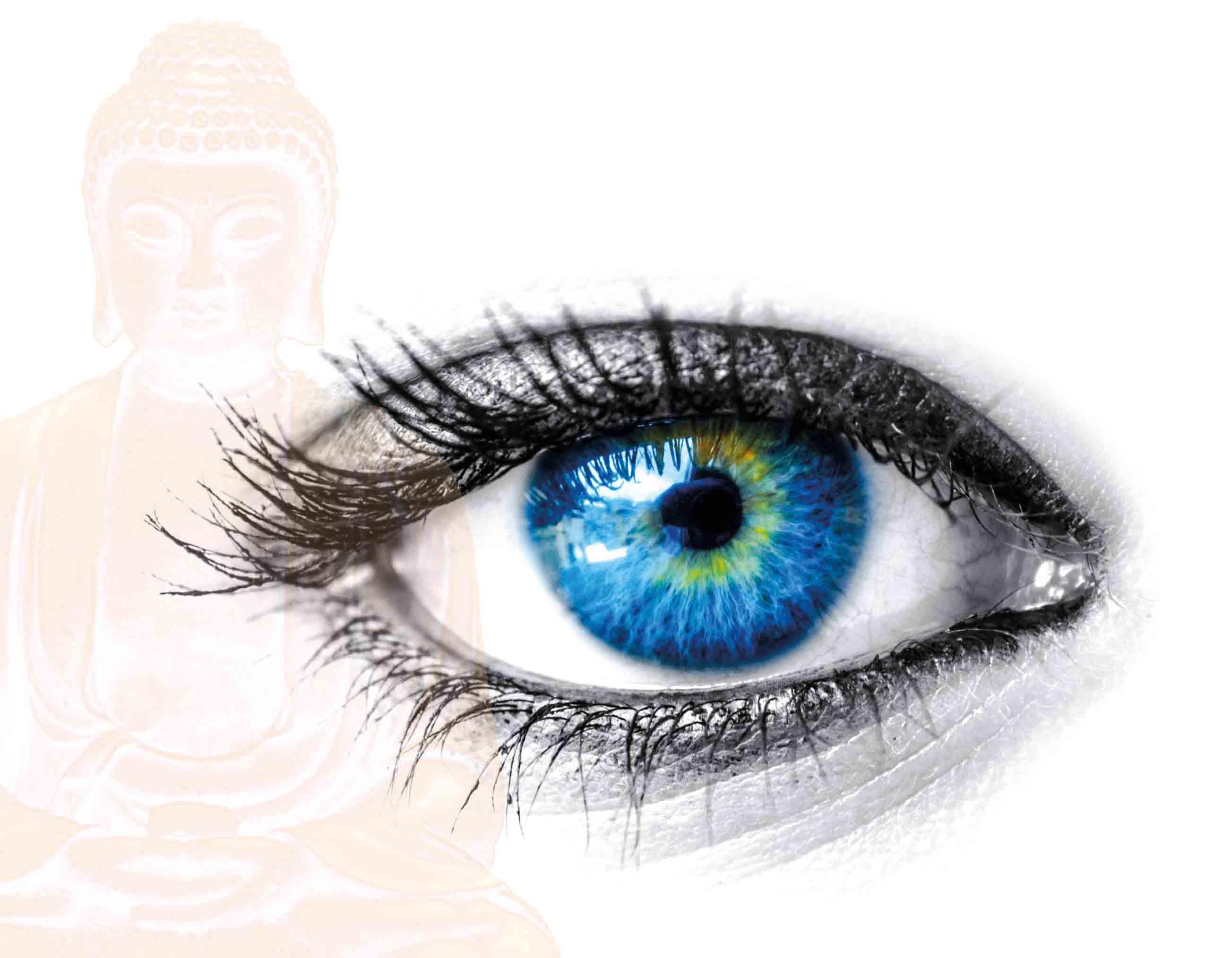I Jornadas de Budismo y Ciencia- la mente II