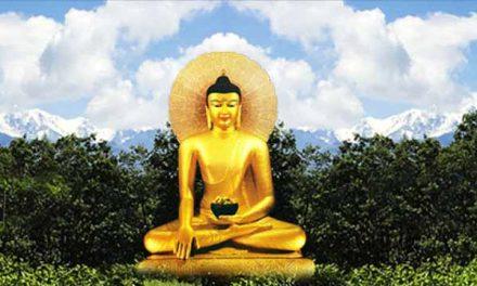 Centro de Retiros Tierra de Budas